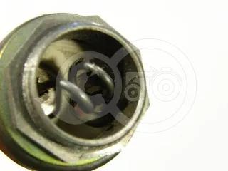 Belarus/MTZ ignition indicator 50 (1)