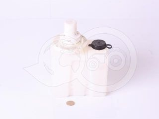 windscreen washer tank with pump (0)