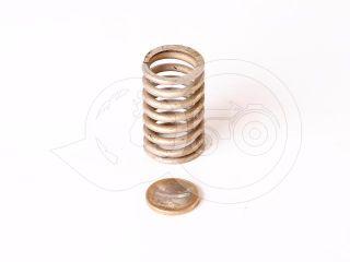 Belarus/MTZ spring 138 (feeder) (1)