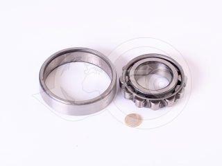 2310 (N310) bearing (Belarus/MTZ front drive axle) (1)