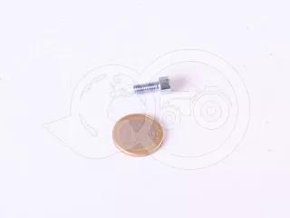 Screw M5x12 socket head screw (Belarus/MTZ door handles) (1)